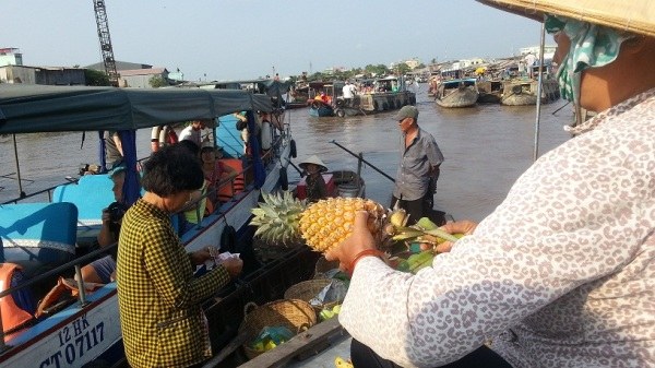 pinaple at the Mekong